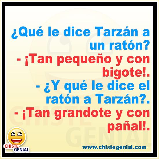 Chistes cortos - ¿ Qué le dice Tarzán a un ratón ?