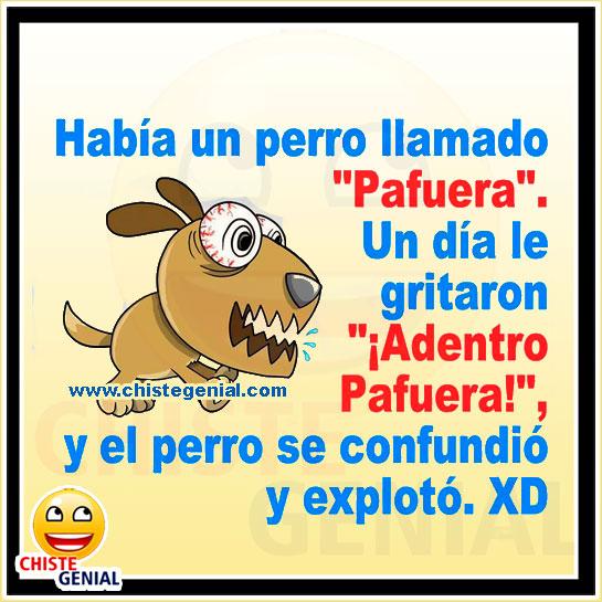 Chistes para niños - Había un perro llamado PAFUERA.