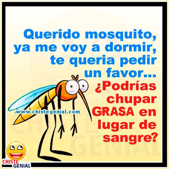 Chistes de animales - Querido mosquito, ya me voy a dormir