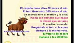 """El caballo tiene s3xo 52 veces al año. El toro tiene sexo 365 veces al año. La esposa mira al marido y le dice: """"Como me gustaría que hagas lo mismo que un toro"""" El marido responde: """" Pregúntale al toro si le come siempre a la misma vaca!"""" El velorio de él será mañana a las 08:00 hs."""