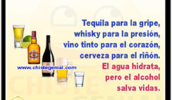 Tequila para la gripe, whisky para la presión, vino tinto para el corazón, cerveza para el riñón. El agua hidrata, pero el alcohol salva vidas