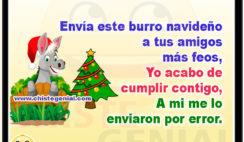Envía este burro navideño a tus amigos más feos, Yo acabo de cumplir contigo, A mi me lo enviaron por error.