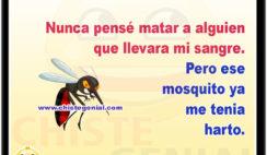 Nunca pensé matar a alguien que llevara mi sangre. Pero ese mosquito ya me tenia harto.