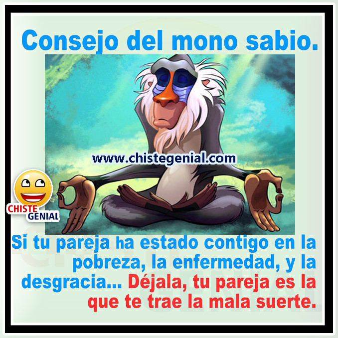 Consejos Del Mono Sabio.