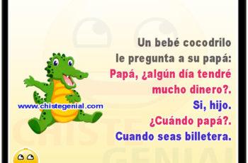 Un bebé cocodrilo le pregunta a su papá: Papá, ¿algún día tendré mucho dinero?. Si, hijo. ¿Cuándo papá?. Cuando seas billetera.