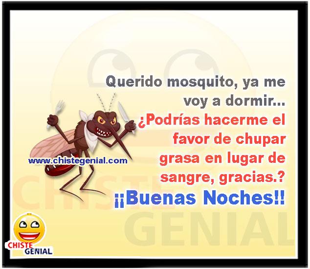 Querido mosquito, ya me voy a dormir - Buenas noches