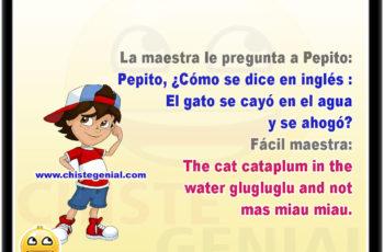 La maestra le pregunta a Pepito: Pepito, ¿Cómo se dice en inglés : El gato se cayó en el agua y se ahogó? Fácil maestra: the cat cataplum in the water glugluglu and not mas miau miau.