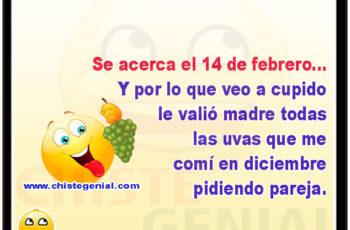 Se acerca el 14 de febrero y por lo que veo a cupido le valió madre todas las uvas que me comí en diciembre pidiendo pareja