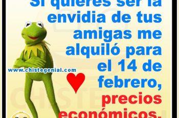 Me alquilo para el 14 de febrero - Chistes de San Valentín