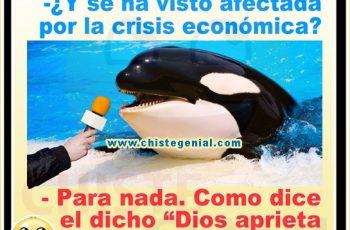 Chistes cortos buenos - Afectada por la crisis económica
