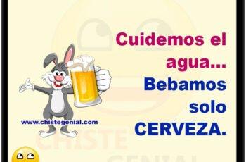 Cuidemos el agua, bebamos solo cerveza.
