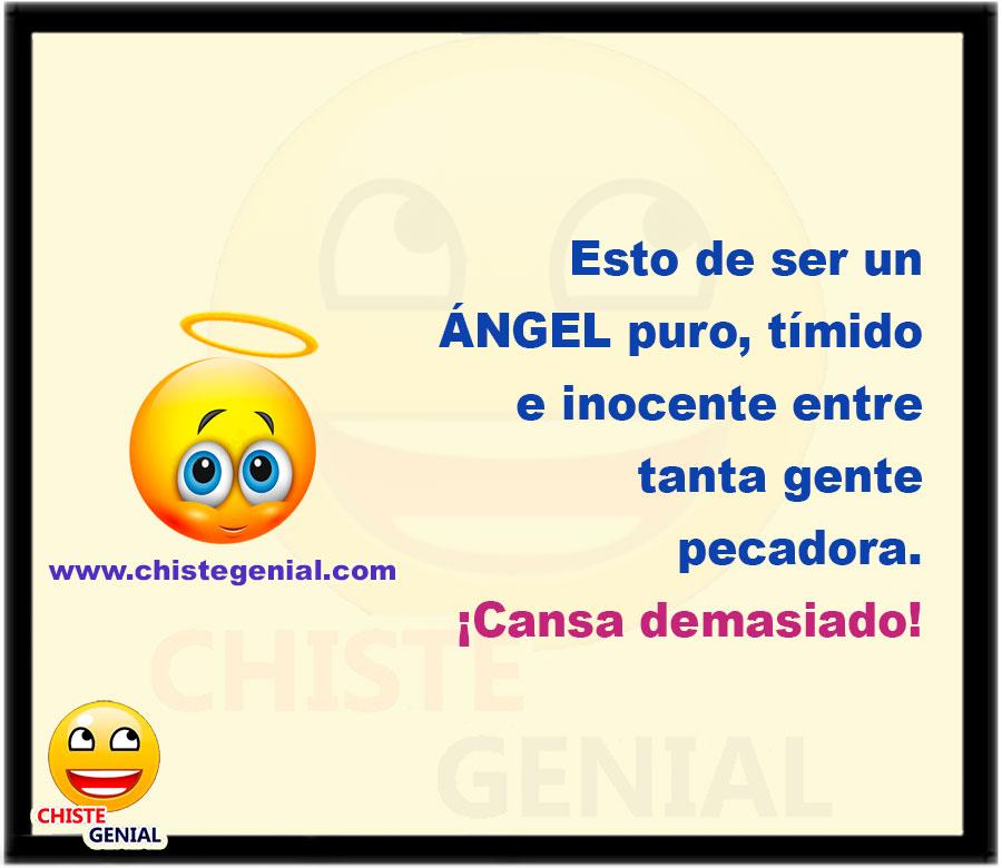 Esto de ser un ángel puro, tímido e inocente entre tanta gente pecadora ¡Cansa demasiado!
