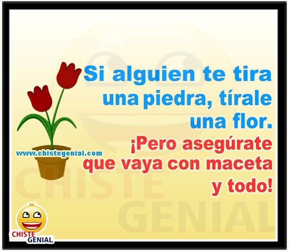 Chistes cortos - Si alguien te tira una piedra, tirale una flor.