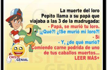 chistes de Pepito - la muerte del loro