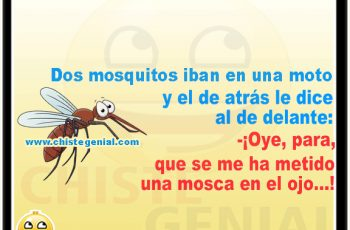 Chistes para niños - Dos mosquitos iban en una moto