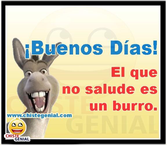 Chistes cortos - Buenos días, el que no salude es un burro