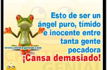 Ser un ángel cansa demasiado