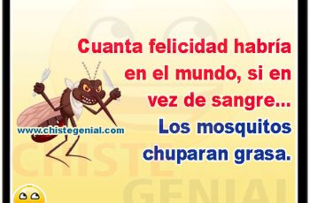Cuanta felicidad habría en el mundo, si en vez de sangre, los mosquitos chuparan grasa