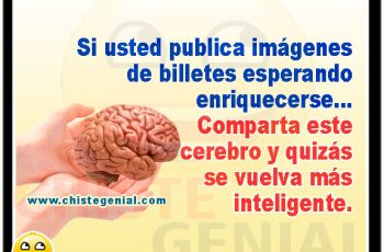 Comparta este cerebro