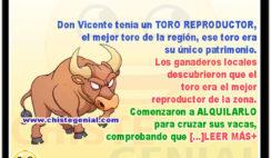 Los ganaderos y el toro semental - Chistes de animales