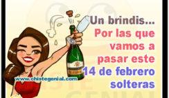 Un brindis por las que vamos a pasar este 14 de febrero solteras - Chistes de san valentin