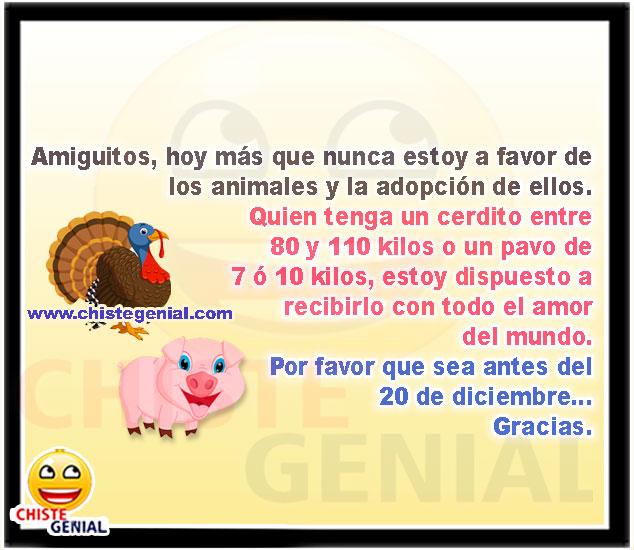 Estoy a favor de los animales y la adopción de ellos - chistes para navidad