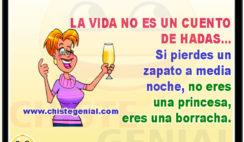 La vida no es un cuento de hadas - chistes de mujeres borrachas