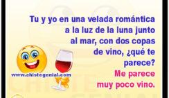 Tu y yo en una velada romántica a la luz de la luna junto al mar, con dos copas de vino, ¿qué te parece? Me parece muy poco vino.