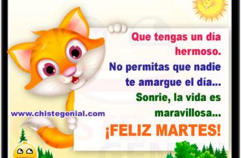 Que tengas un día hermoso. No permitas que nadie te amargue el día... Sonrie, la vida es maravillosa... ¡FELIZ MARTES!