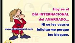 Hoy es el DÍA INTERNACIONAL del AMARGADO... Ni se les ocurra felicitarme porque los bloqueo.