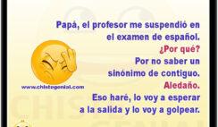 Papá, el profesor me suspendió en el examen de español. ¿Por qué? Por no saber un sinónimo de contiguo. Aledaño. Eso haré, lo voy a esperar a la salida y lo voy a golpear.