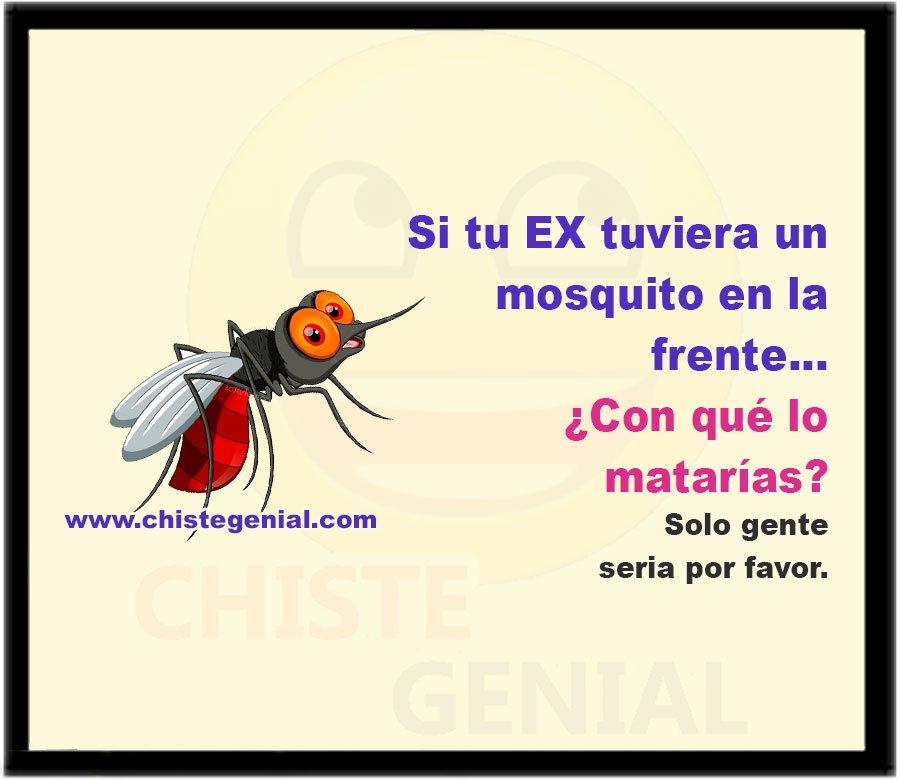 Si tu EX tuviera un mosquito en la frente...  ¿Con qué lo matarías?  Solo gente seria por favor.