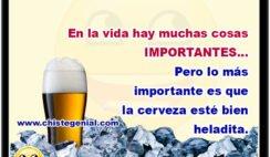 En la vida hay muchas cosas IMPORTANTES... Pero lo más importante es que la cerveza esté bien heladita.